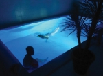 skanlux-poolhus-sommerhus-investering-brugt-luksussommerhus18