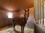 hesteejendom-liebhaverejendom-jylland28