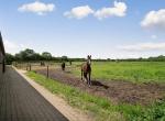 hesteejendom-liebhaverejendom-jylland31
